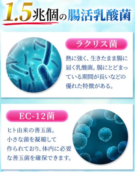 ベルタこうじ生酵素成分5